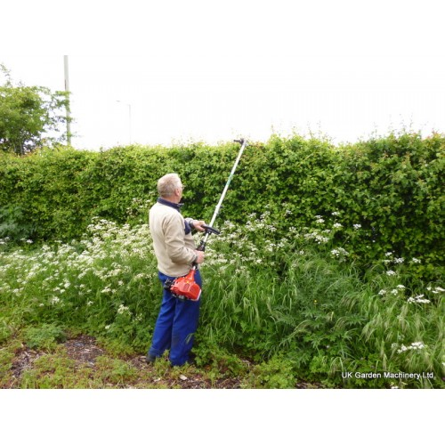 Long reach Hedge cutters